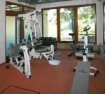 Hotel U Modrinu - welness - fitness