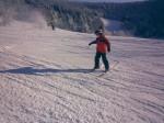Rokytnice-skien in Horni Domky 3