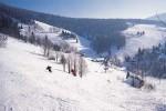 Rokytnice-skien in Horni Domky2