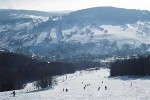 Rokytnice-skien in horni domky